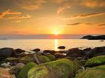 Golden Seascape