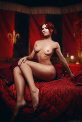 Witcher - Triss Merigold by adelhaid