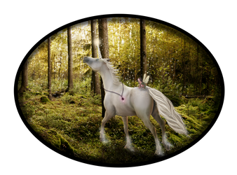 Chasing Faeries by silverthorne-studios