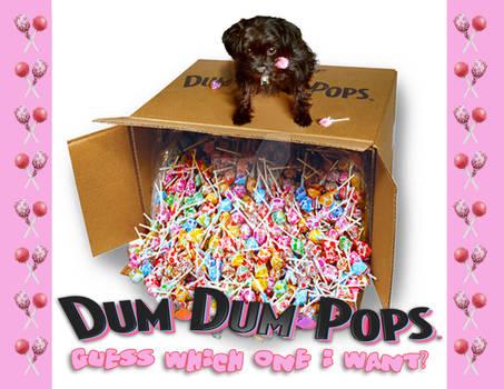 Dum Dum Pops Pup