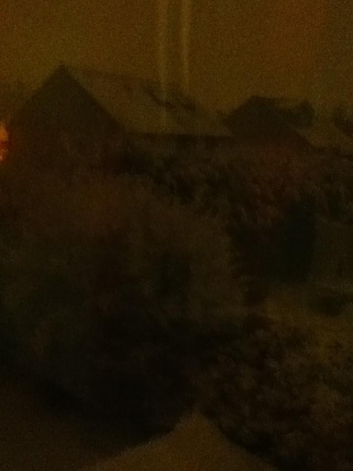 Snow Photo 4 by GHENGIZZ