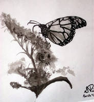 butterfly by pikels2