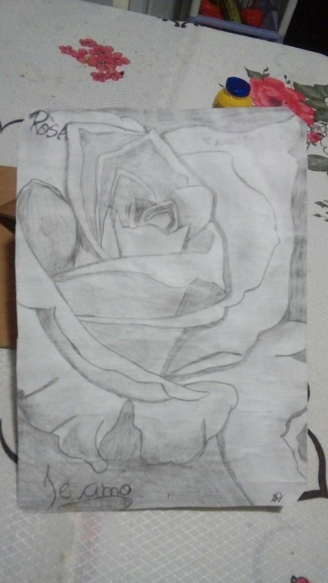 rosa by sandrablue12