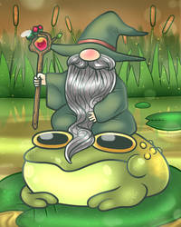 The Frog Wizard
