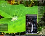 desktop 8-01-10