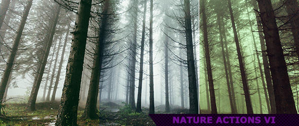 Nature Photoshop Actions for Photography 6