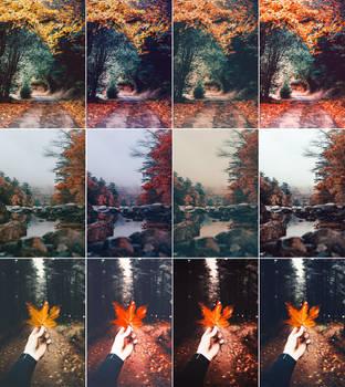 Autumn - Photoshop Actions