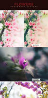 Flowers Actions by ViktorGjokaj