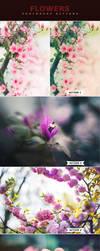 Flowers Actions by ViktorGjokaj