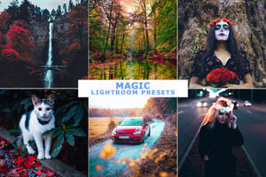 Magic Lightroom Presets