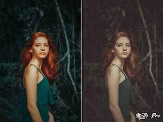 Matte Pro Action Before And After Photography