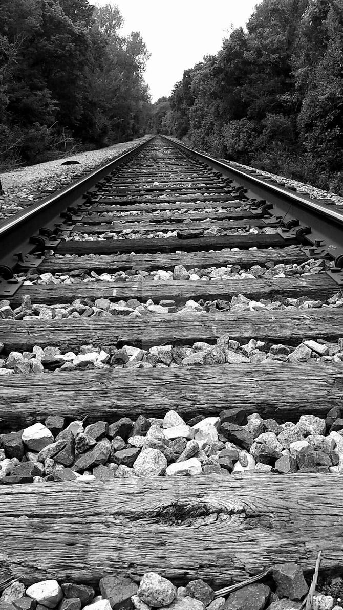 East Tracks by caseyking
