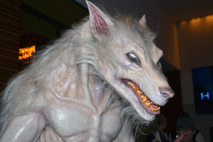 Underworld  Lycan Costume Werewolf