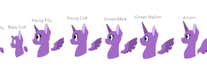Pony Heads Base- Free To Use! by A-Chatty-Cathy