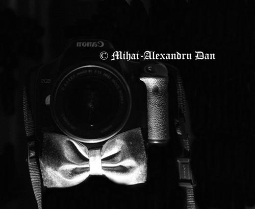 Alexandru-Dan's Profile Picture