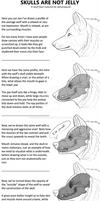 Canine head - Mini Tutorial: SKULLS ARE NOT JELLY!
