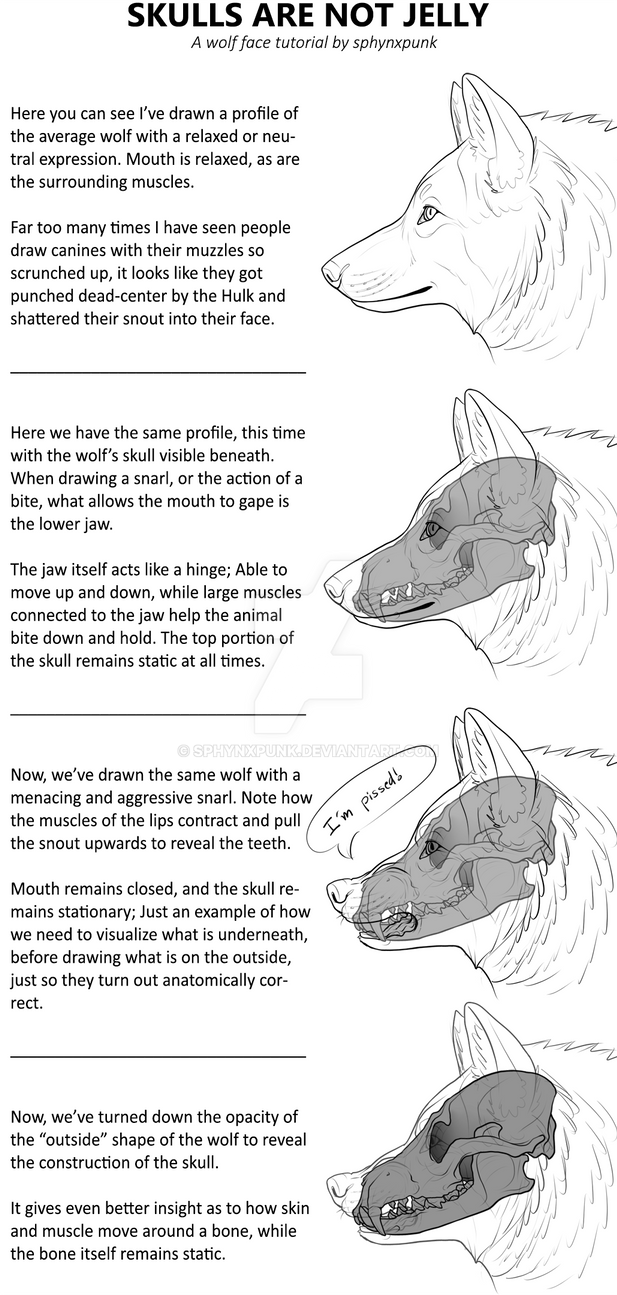 T0xiceye (caleb J Andrews) Deviantart Tutorial On How To Draw