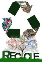 Recycle by jrbamberg