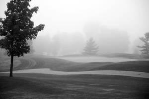 Foggy Morning Golf by jrbamberg
