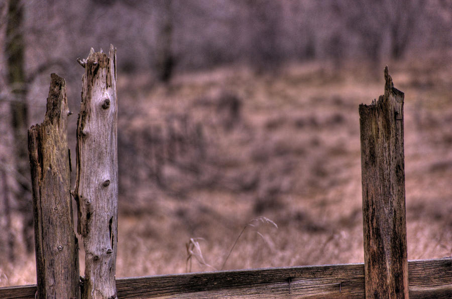 Wooden_Fence_2 by jrbamberg