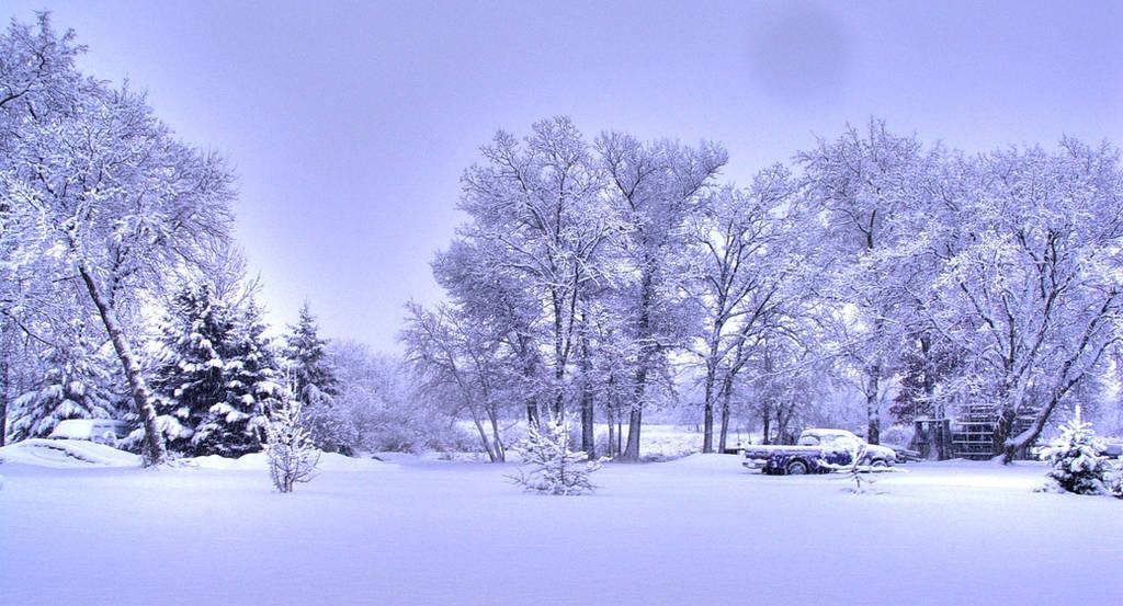 Snow by NooMoahk