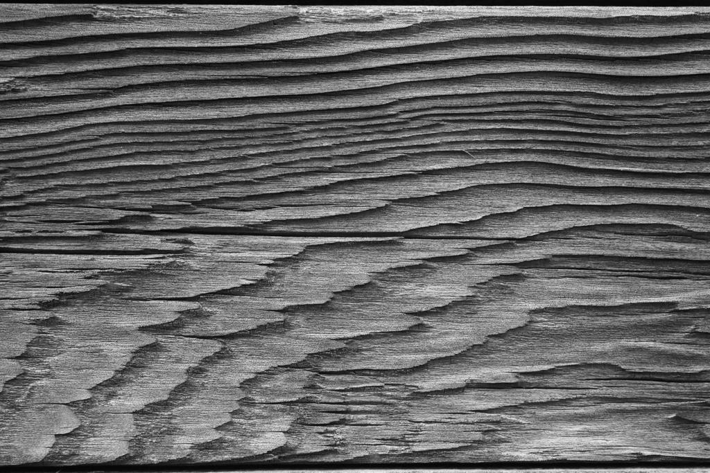 wood grain texture. Wood Grain Texture By IsrafelX U