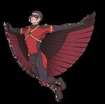 robin's flight