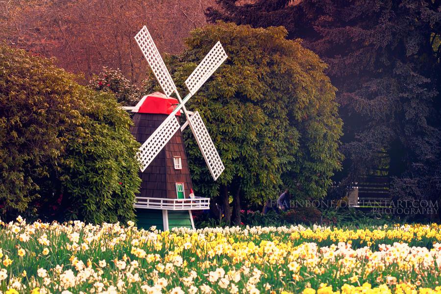 Tulip Festival by FlabnBone