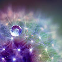 Pearls of Wisdom IV by FlabnBone