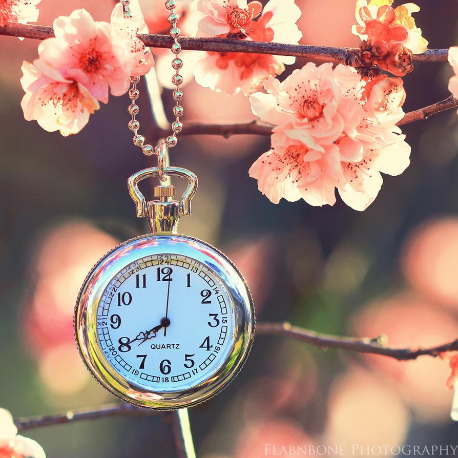 Eternal Spring by FlabnBone