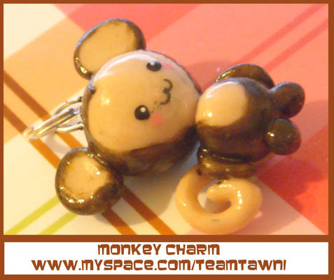 Monkey Charm