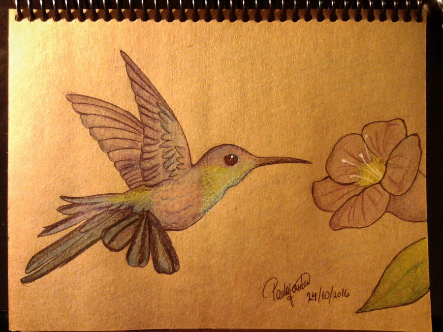 La galería de Paula (firsthuntress)  - Página 3 Hummingbird_by_firsthuntress-dambxpp