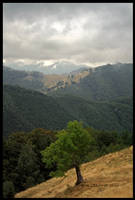 Landscape by Edu-Edu