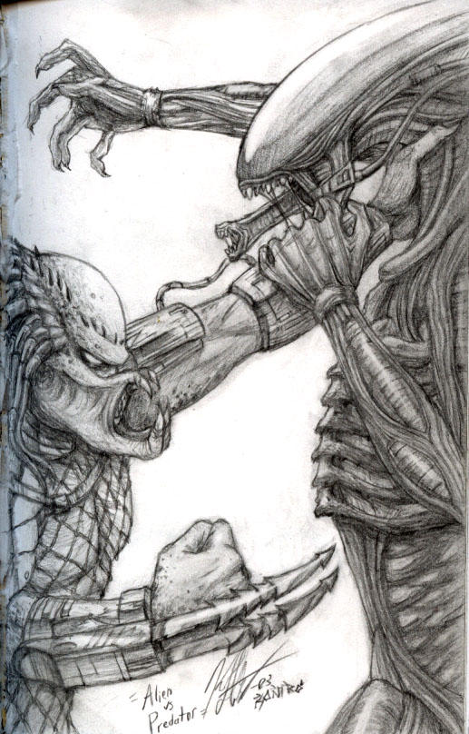 Alien vs predator sketch by knkl