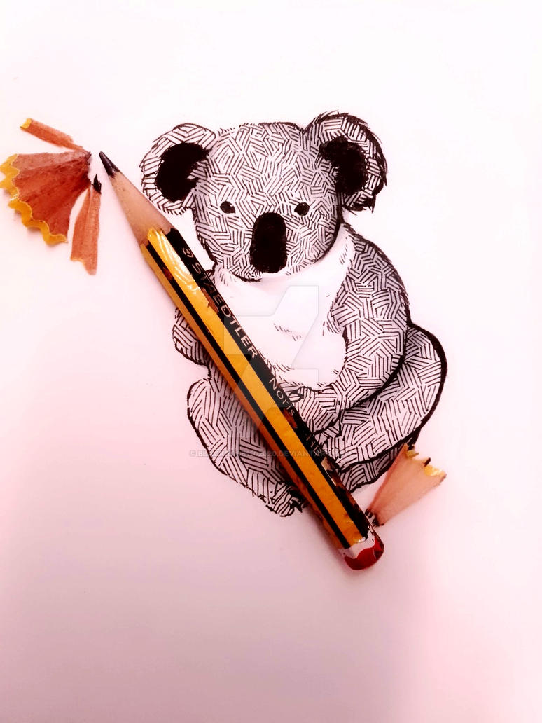 A Koala by BlackRose1102020