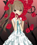 My Love is like a Red Rose