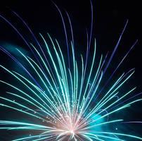 Flower of Light