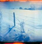 holga wintertime - fence