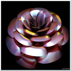 Not-So Delicate Flower by Loren-MacGregor