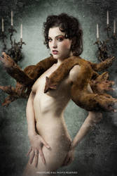 Porcelain - 'Nine Tails' by FrizzyCubePhotos