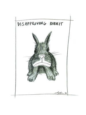 Disapproving Rabbit