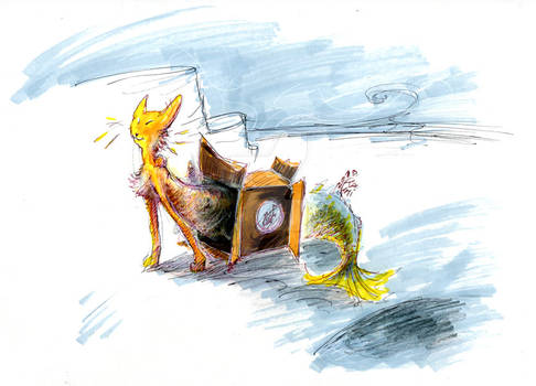 Mermay : Cat-fish In a box.