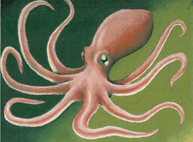 Giant Squid by KillustrationStudios