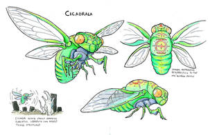 Cicadrala by KillustrationStudios