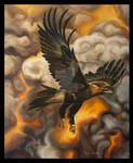 Wedge Tailed Eagle in the Upheaval. by TracieMacVean