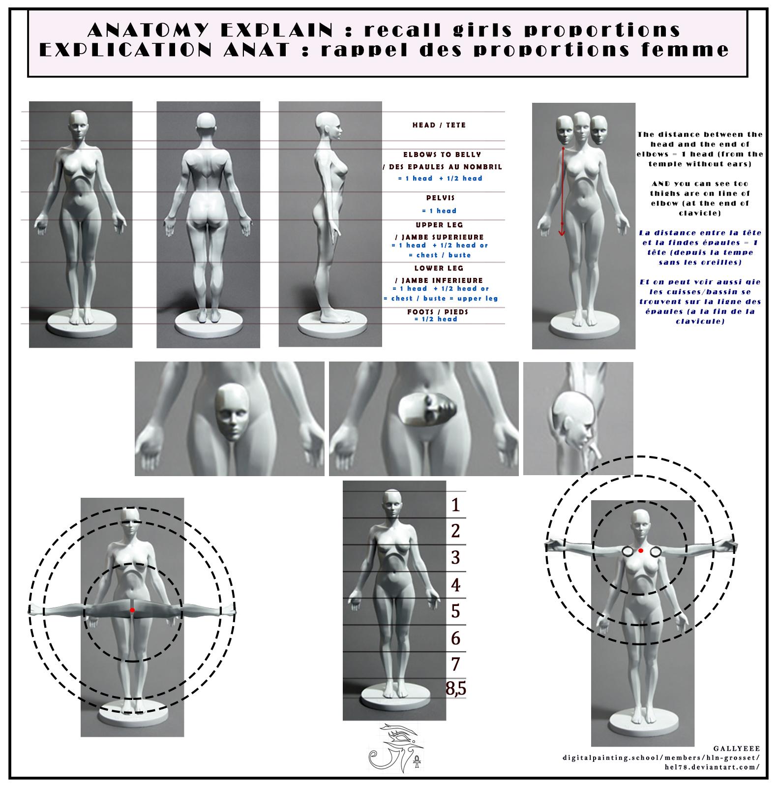 PLANCHE 4 proportions femmes by hel78 on DeviantArt