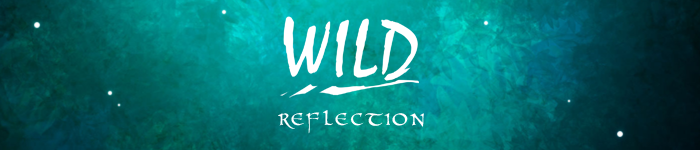 WILD : Reflection | Synopsis  Banniere_by_misical-d97qcyl