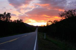 Cosy Road