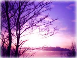 Purple Nature by ASHURII-sgtfunkytown