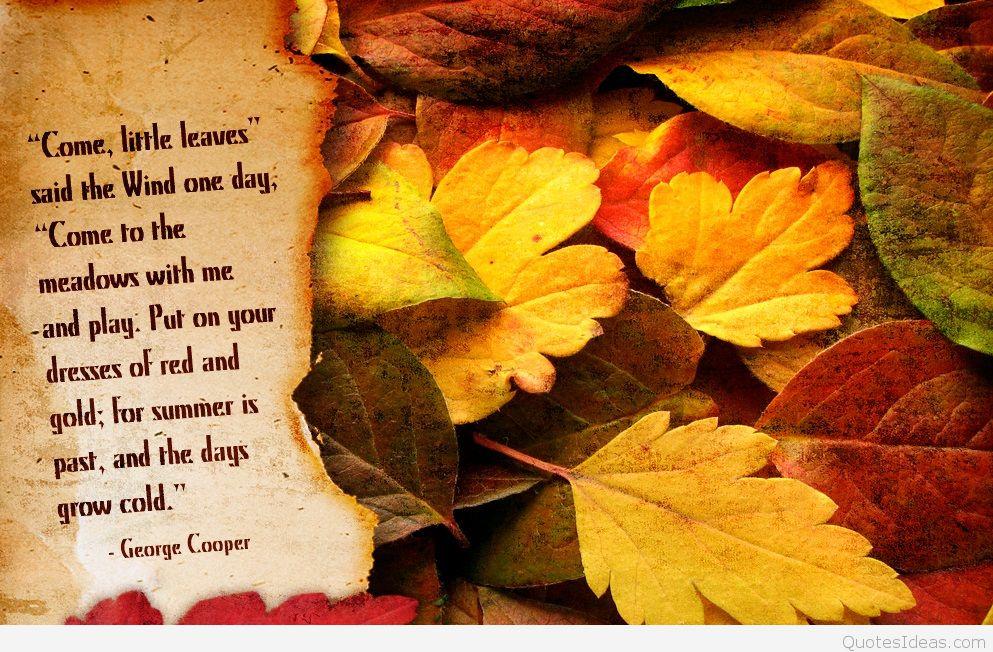Autumn Desktop Wallpaper 6 By Lucytherescuedcat On Deviantart
